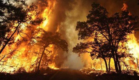 Požár Kalifornie Paradise listopad 2018